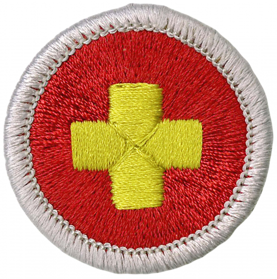 First Aid Merit Badge | Mississippi Valley Council | Boy Scouts of America